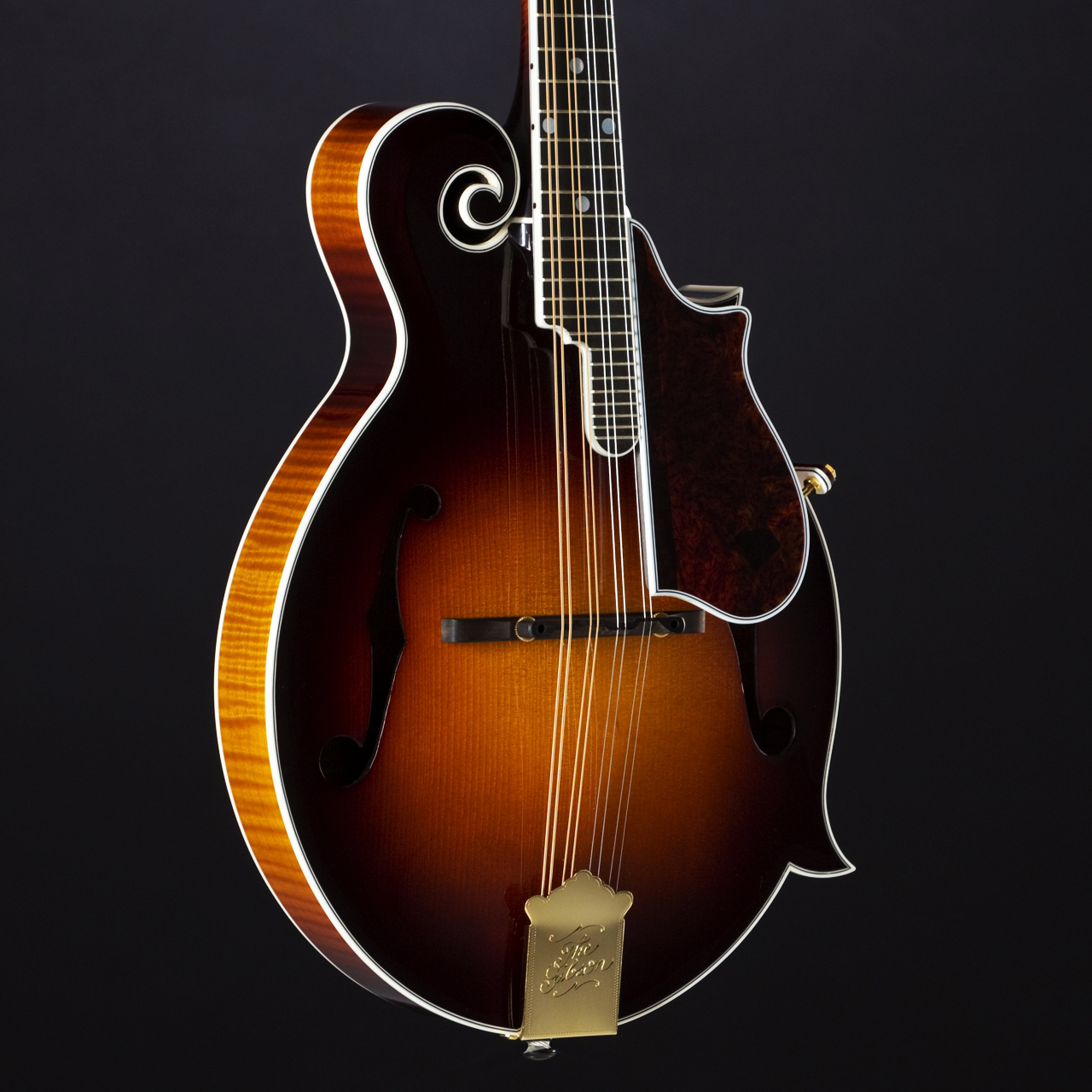 Gibson F5-L The Fern Korpus