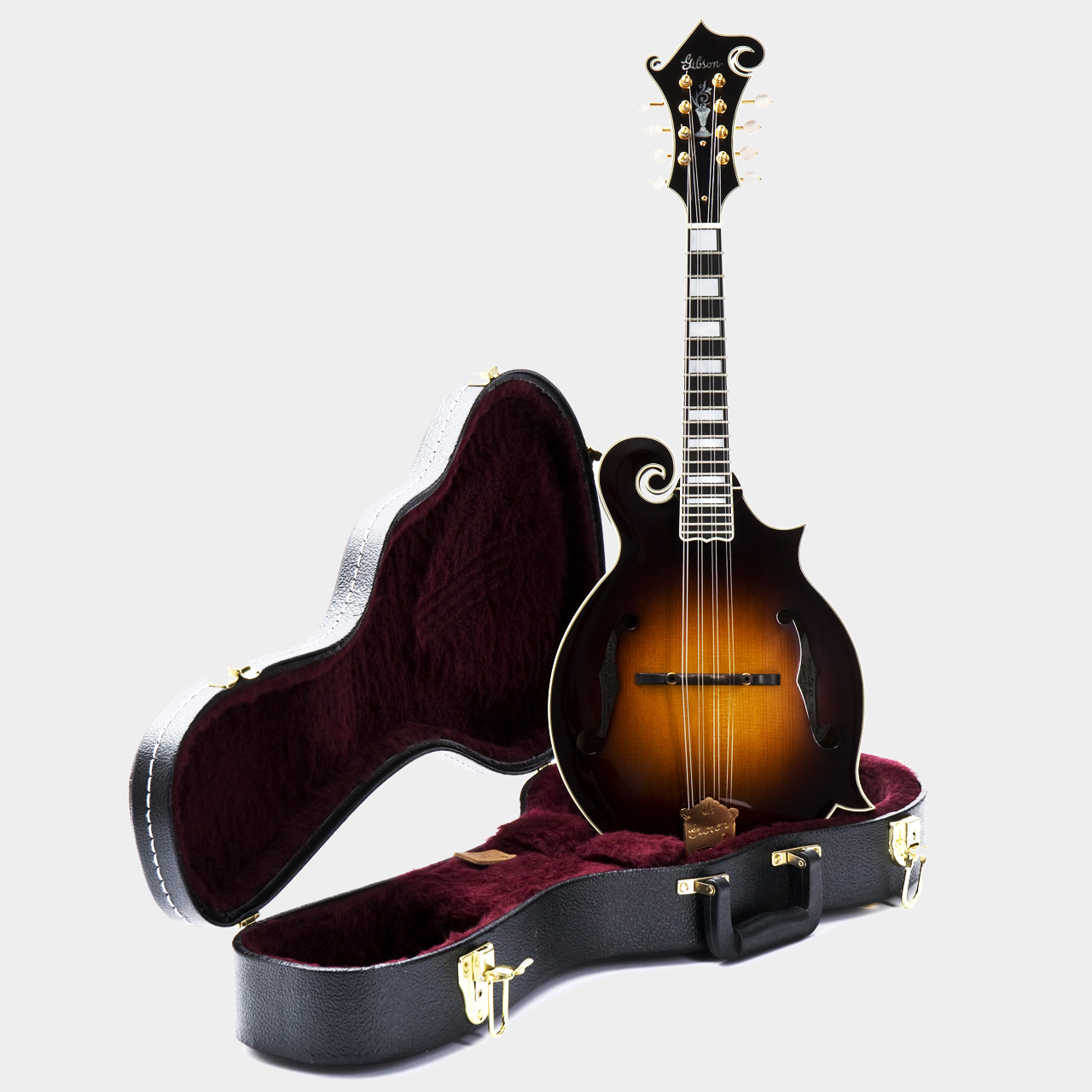 Gibson F-5 Sam Bush Mandoline Case