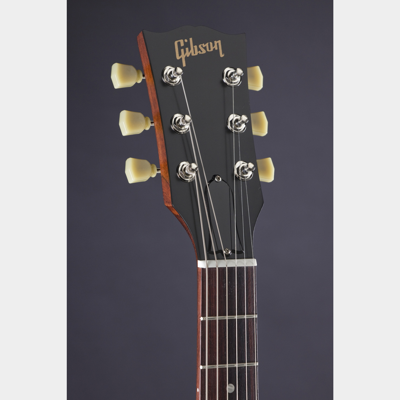 SGfaded16TWBHeadstock