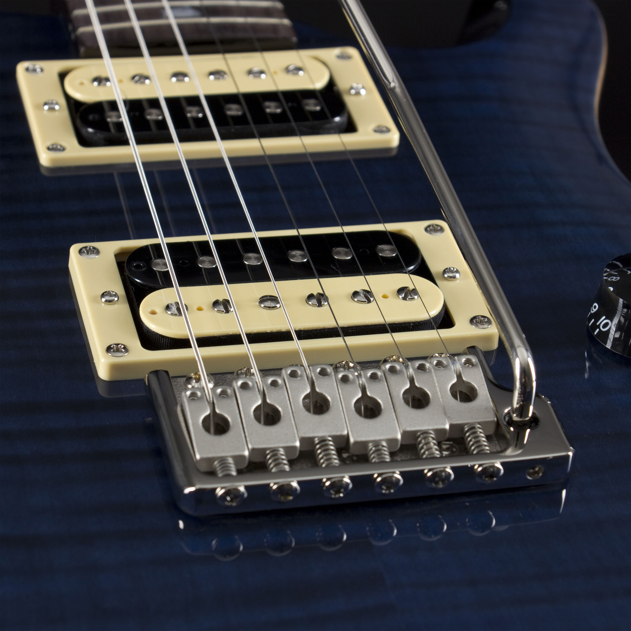 PAUL REED SMITH SE Custom 24 Whale Blue Pickups