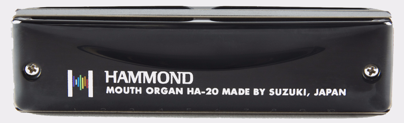 SUZUKI Hammond Blues Organ harp
